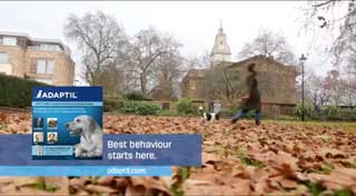 The Adaptil Christmas advert will appear during Paul O'Grady's For the Love of Dogs Christmas Special on Boxing Day.