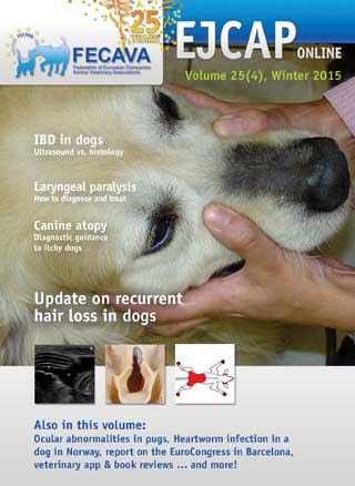 The European Journal of Companion Animal Practice winter 2015 issue has been released.