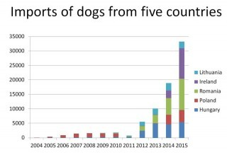 A graph showing the rise in the number of dogs imported from the five countries between 2004 and 2015. Image: RSPCA.