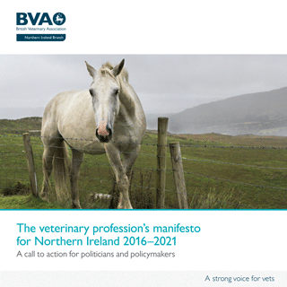 The BVA's manifesto for Northern Ireland 2016–2021.