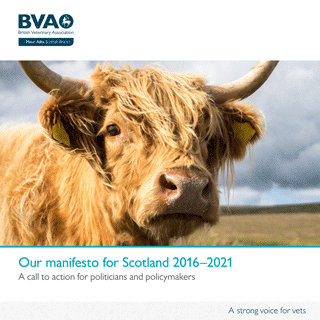 The BVA's manifesto for Scotland 2016–2021.