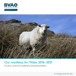 The BVA's manifesto for Wales 2016–2021.