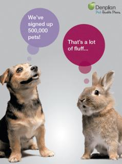 Denplan Pet Health Plans Reaches Half A Million Pets Vet Times