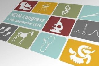 BEVA Congress 2016