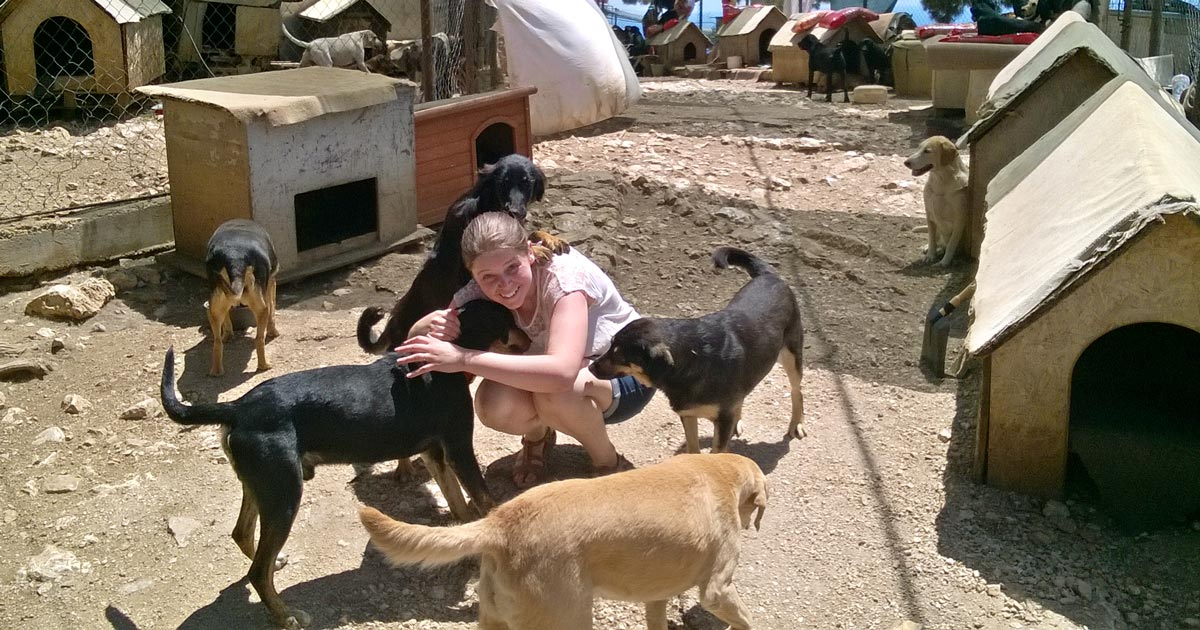Becky Bridges with some of the strays at Dubronik Animal Shelter.