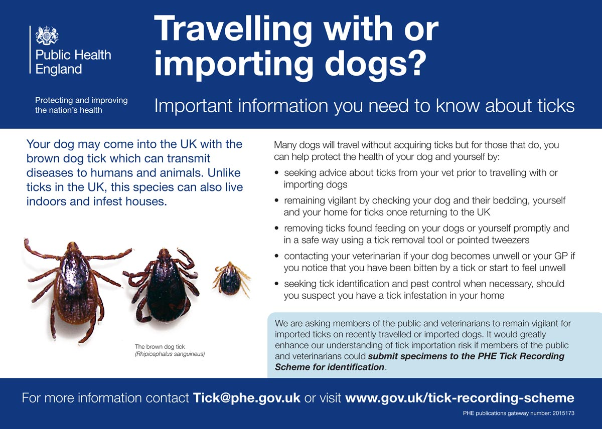 Public Health England's tick poster