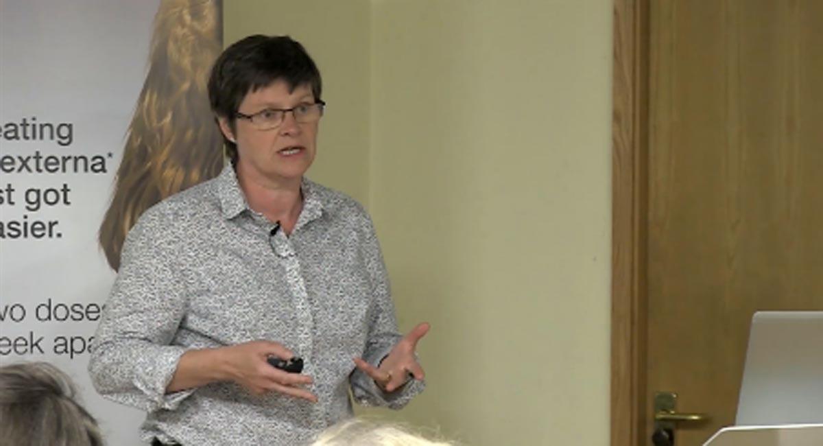Sue Paterson
