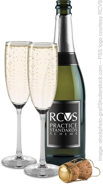 bubbly-bottle-rcvs_stockphoto-graf