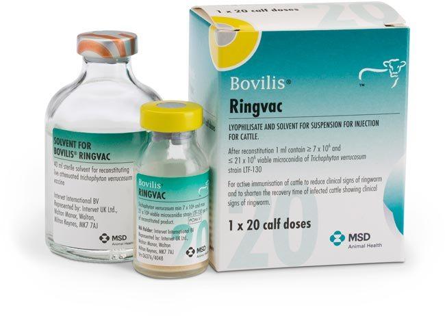 Bovilis Ringvac