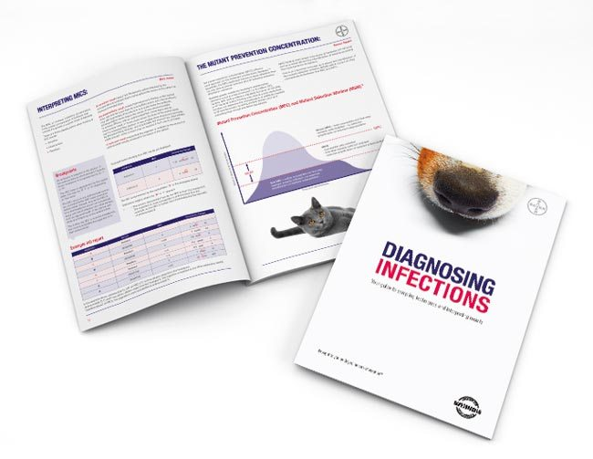 Diagnosing Infections