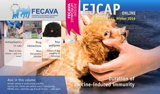 The winter issue of EJCAP is available free to all UK veterinary professionals.