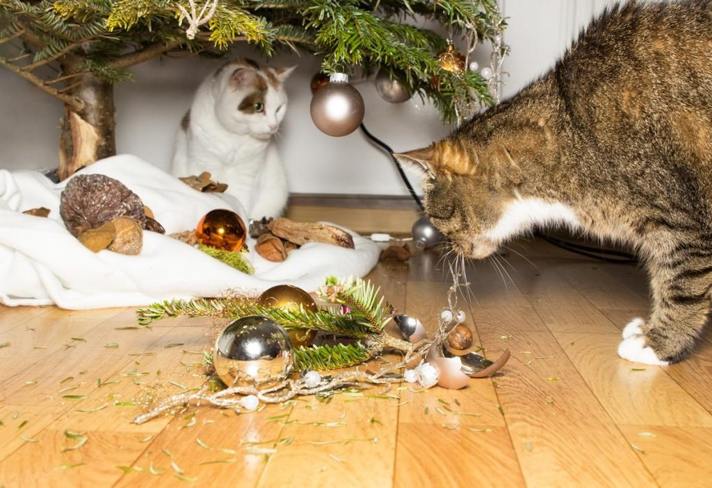 Cat Bauble Smash.