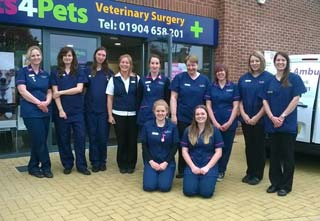 The team at Vets4Pets York.