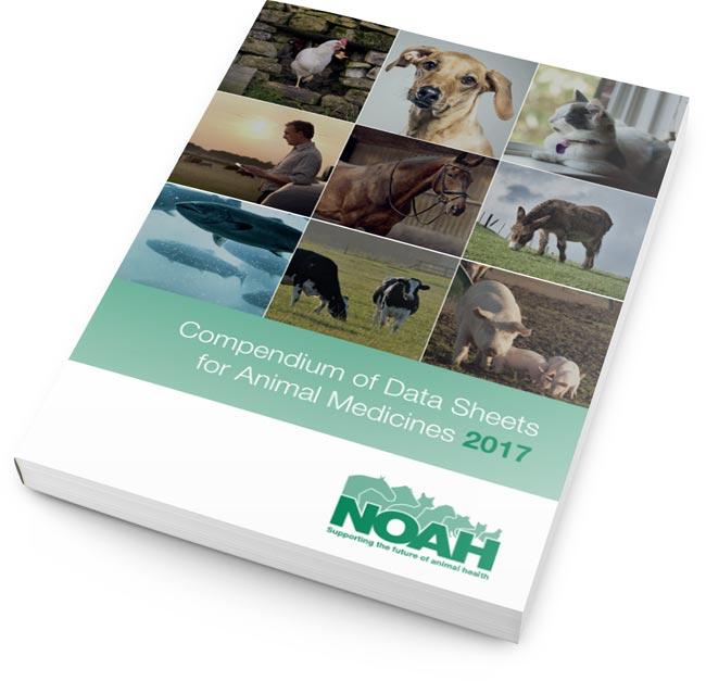 NOAH Compendium 2017
