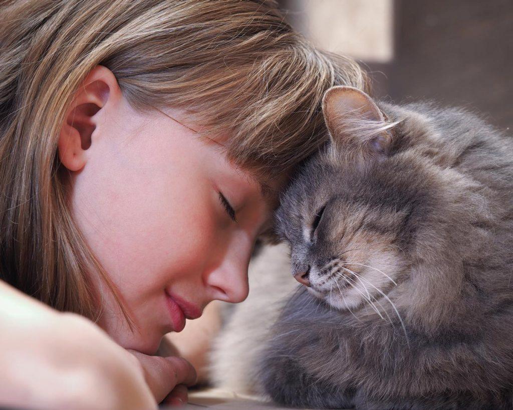 Cat and child.