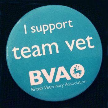 Team Vet badge