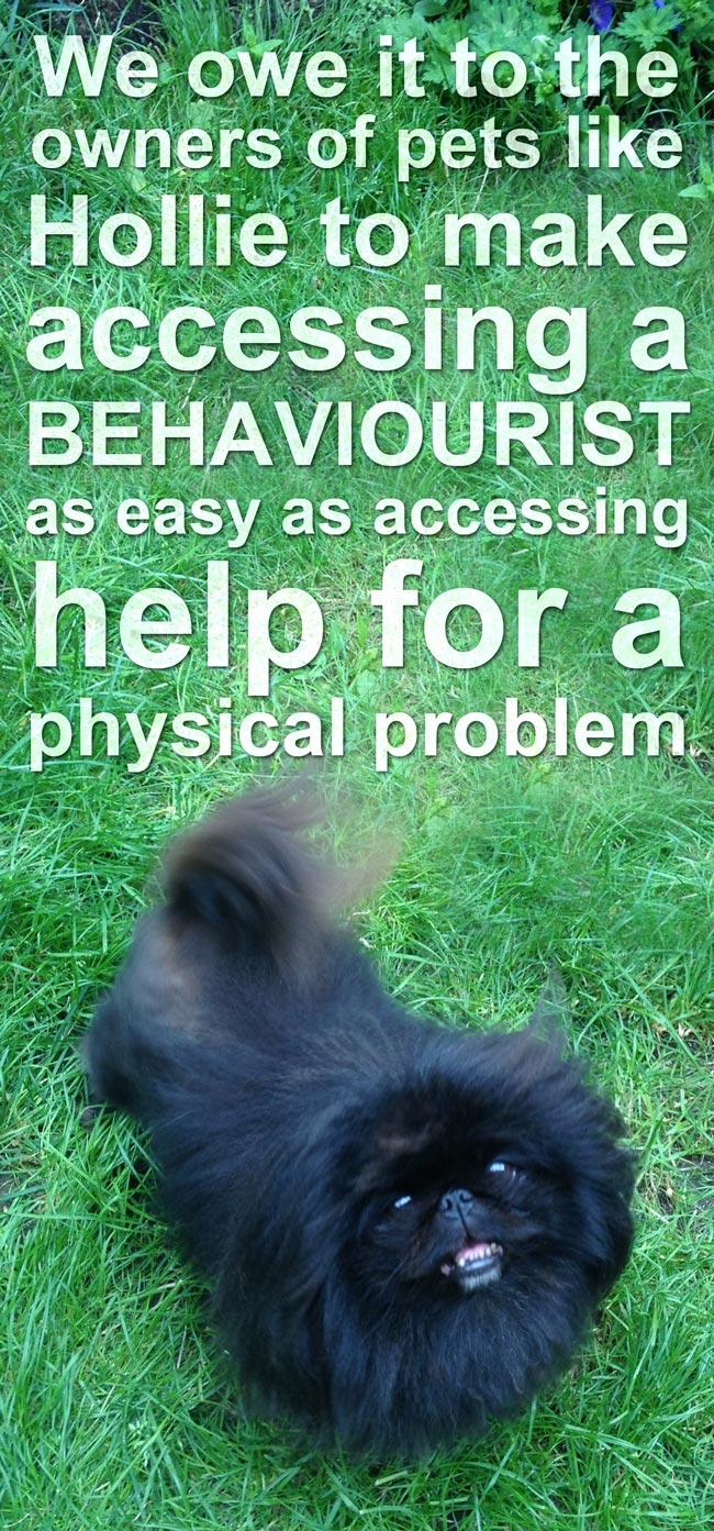 hollie-behaviourist