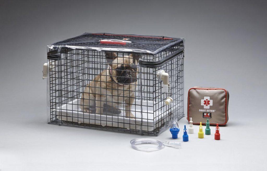 Brachy cage