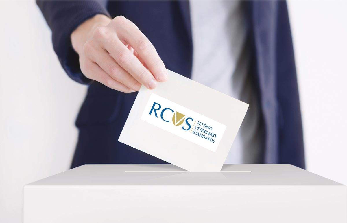 Deadline looms for RCVS elections