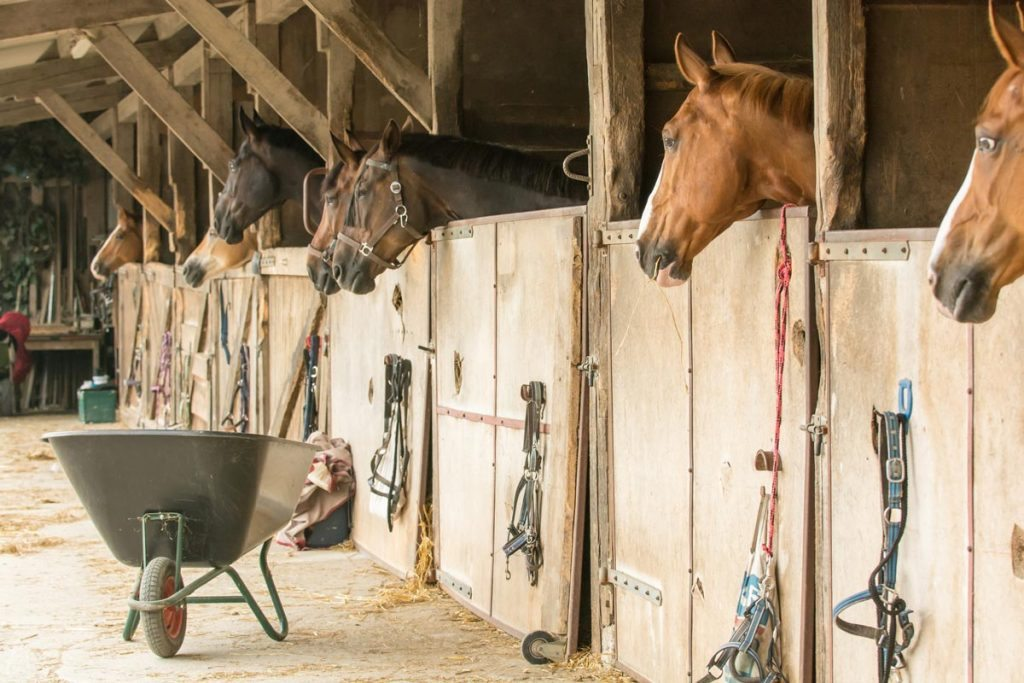 Stables.