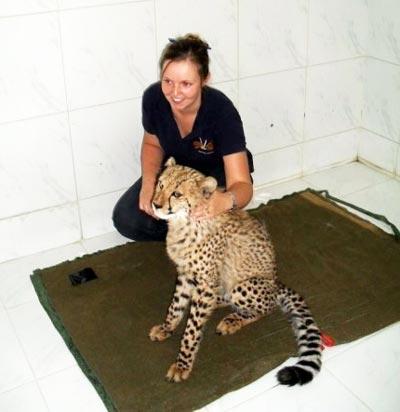 Helen and cheetah