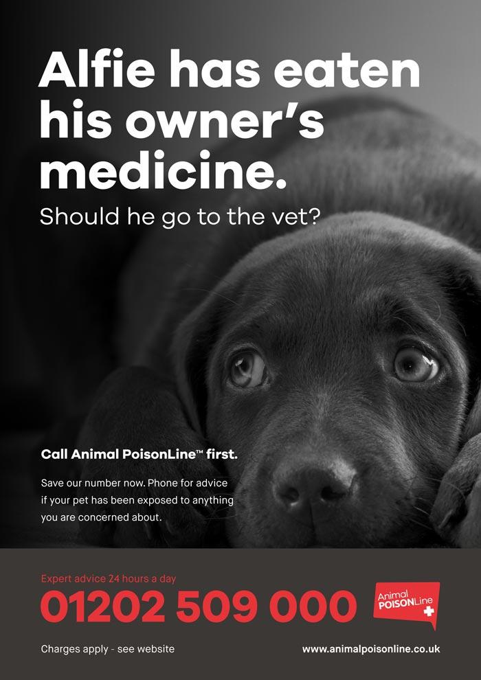 animalposonline_poster