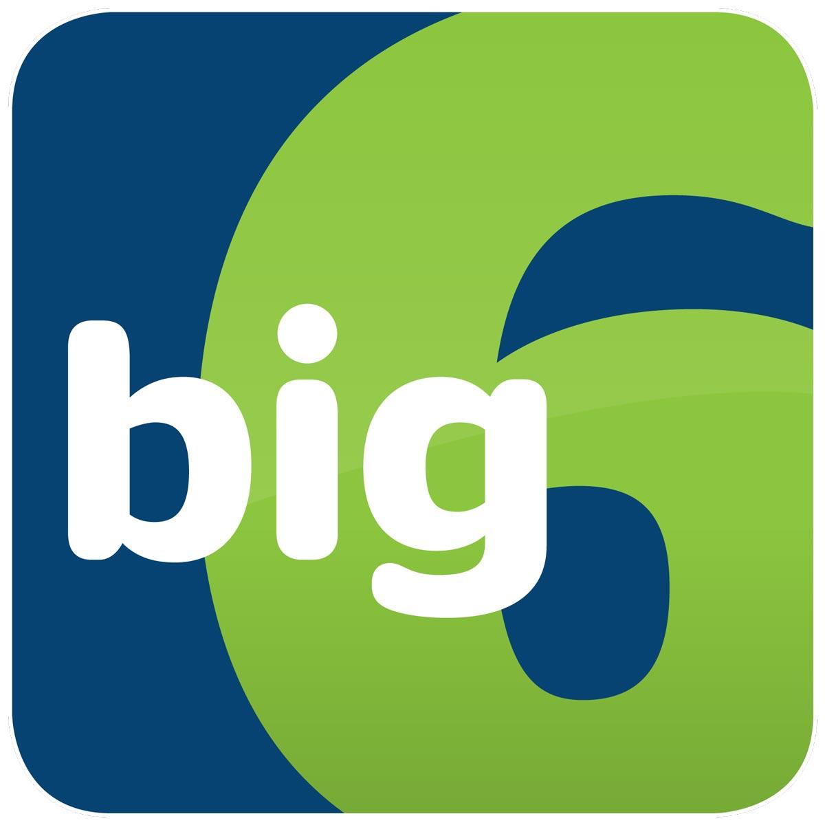 Big 6 logo