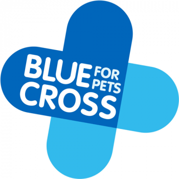 blue-cross_logo