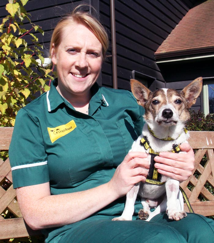 Dogs Trust VN Sue Thomas is fostering Bobby while he waits for a new home.