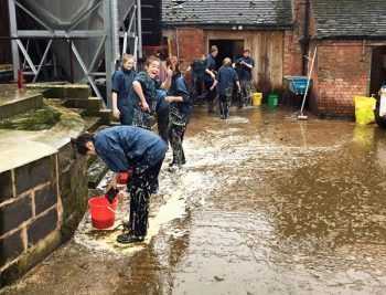 Reluctant hero: veterinary function in on-farm biosecurity