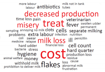 Lowering scientific mastitis: getting messages throughout to farmers