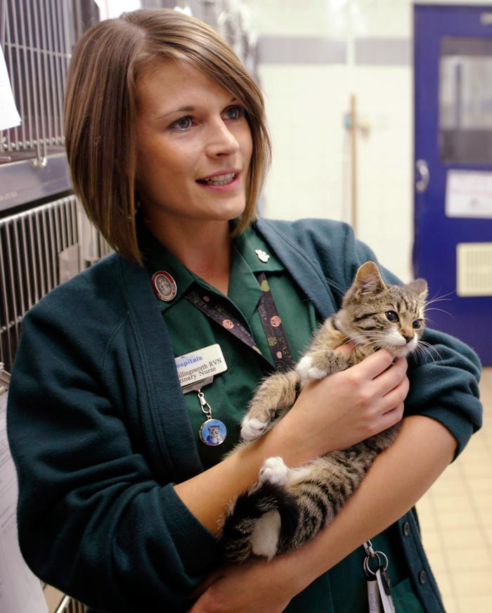 The Cat Population Control Group is calling on vets to share their views on neutering cats.