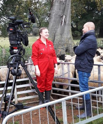 Prototype ovine illness detection system takes to TV screens