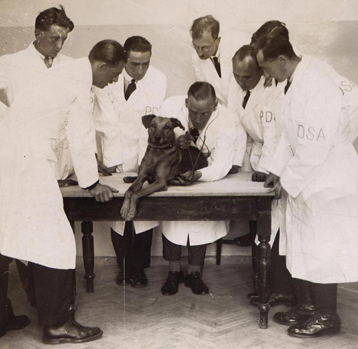 An early photo of PDSA vets.