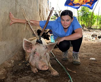 many rural households in Nicaragua keep pigs and depend on them for their livelihood. IMAGE: Kate Beamish.