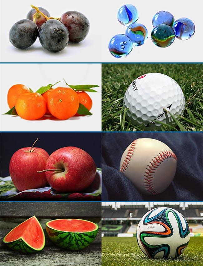 Christmas particular: sporties versus foodies