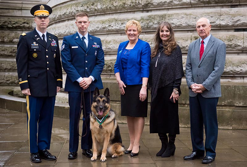 Heroic hound awarded for wartime actions