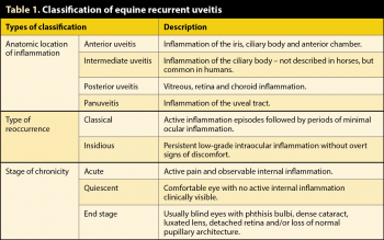 Table 1. Classification of equine recurrent uveitis.