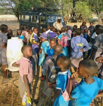 African journey half 2: bitch spays to baboon assault