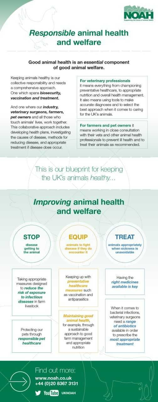 Noah draws up new blueprint for animal health vet times the infographic outlines the importance of good animal health in maintaining welfare malvernweather Image collections
