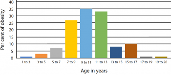 Ageing results on physiology and vitamin of older pets – half 1