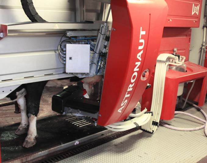 Robotic milking.