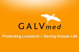 GALVmed appoint Peter Jeffries as CEO