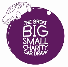 The great big small charity car draw 2011