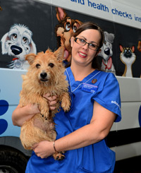 PDSA VN Amy Henson welcomes a patient on to one of the new vehicles