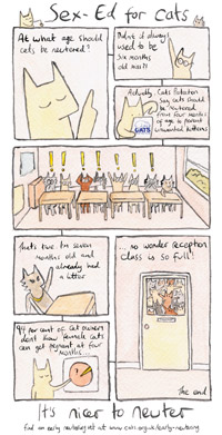 Cats Protection comic strip