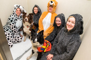 The staff at Torrington Orthopaedics in their kennels.