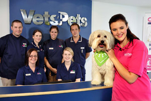 Ashley and Pudsey have teamed up with Vets4Pets and have appeared in a number of videos for the group's website
