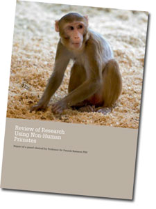 Review of Research Using Non-Human Primates