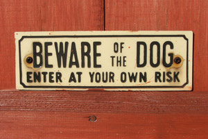 Beware of the Dog: Enter at your own risk.